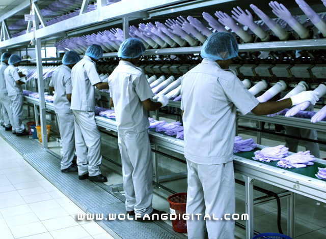 The harvest. Workers slip completed gloves off the formers. This is just one isolated row of the numerous production lines located around the factory.